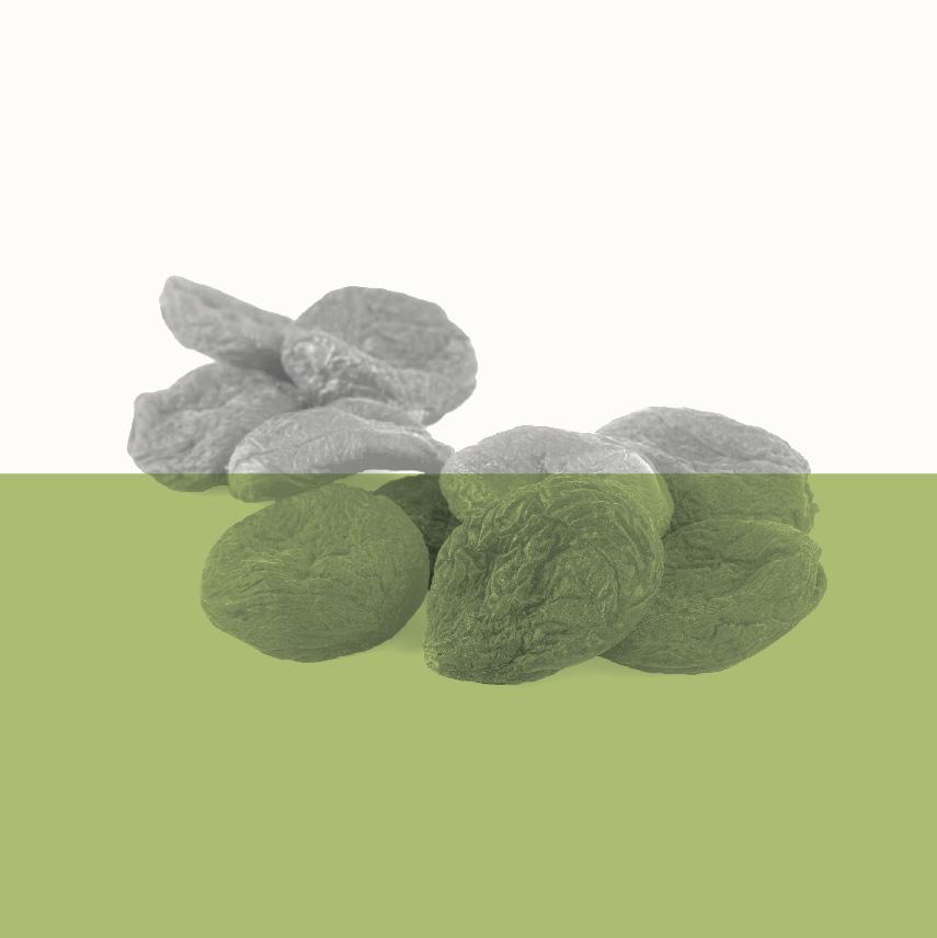 Organic-Icons-05