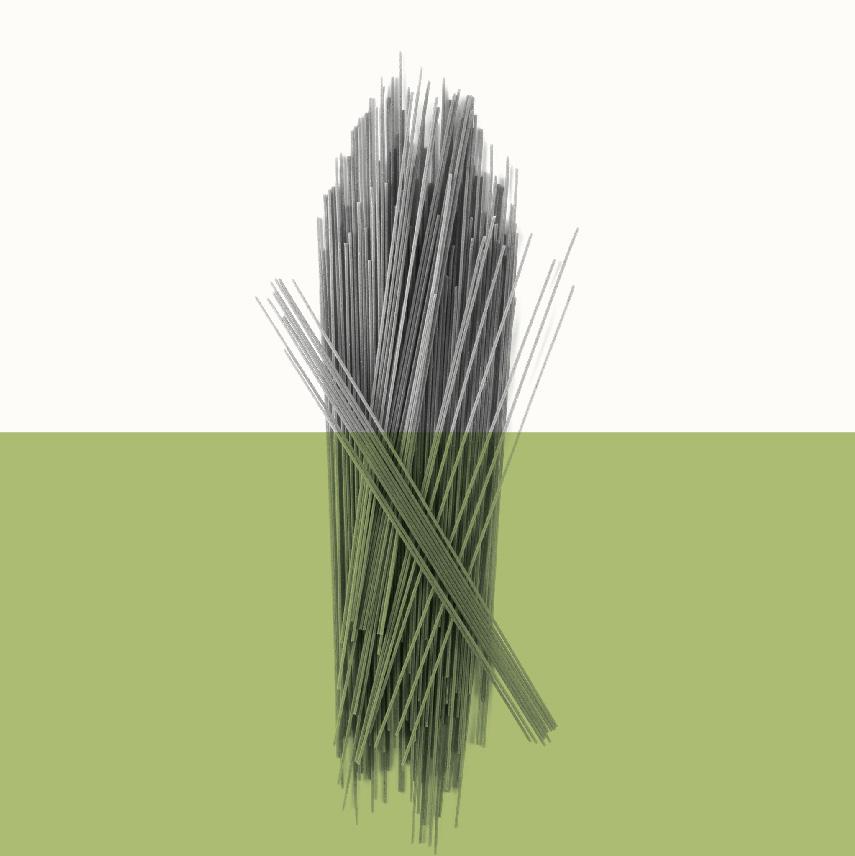 Organic-Icons-06